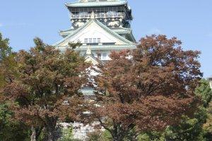 ปราสาทโอซาก้า ( 大阪城) ที่ตระหง่านท่ามกลางความงดงามของใบไม้เปลี่ยนสีในฤดูใบไม้ร่วง