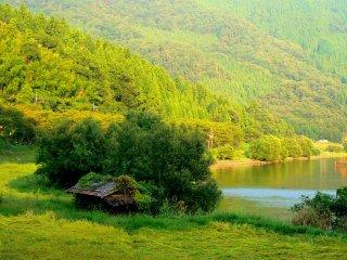 Une construction rustique dans une rizière, dissimulée entre des pentes recouvertes de cèdres et le lac