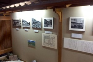 Photos of Takahan throughout the ages