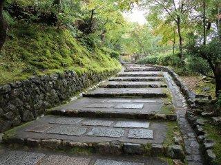 緩やかな石段を登りつめると山門が見えてくる