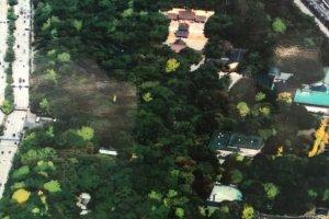 ภาพถ่ายในมุมสูงของศาลเจ้าอัตสึตะ (熱田神宮 / Atsuta Shrine) ที่ให้เห็นอาณาบริเวณโดยรอบซึ่งเห็นได้ชัดเจนนั่นก็คือป่าไม้อันเขียวขจีนั่นเอง