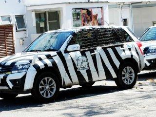 Bạn có thể lên một chiếc xe nhỏ nếu bạn muốn có một cái nhìn riêng tư hơn về các loài động vật hoang dã.