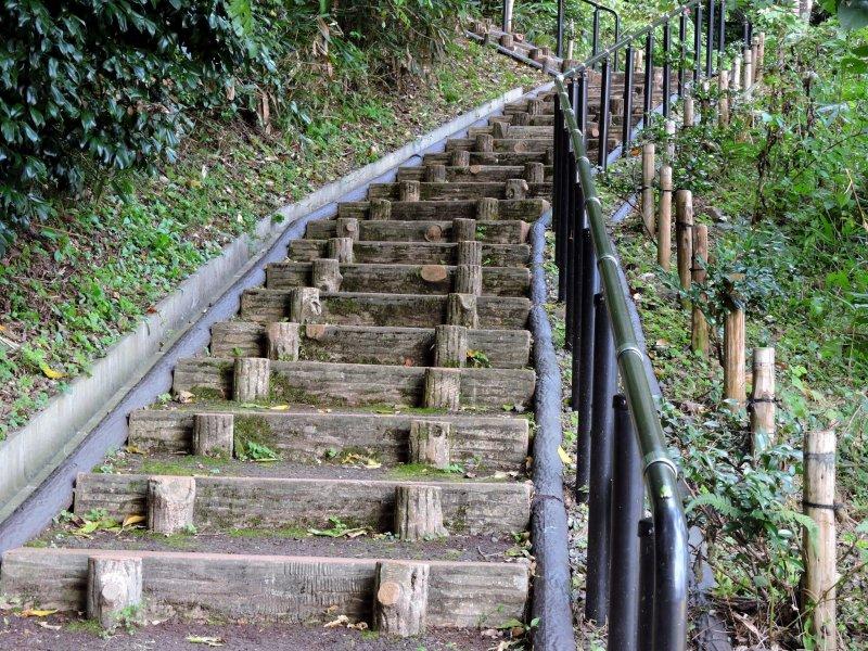 250미터 높이의 가메야마 산 정상까지 끝없이 가파른 발걸음이 이어진다