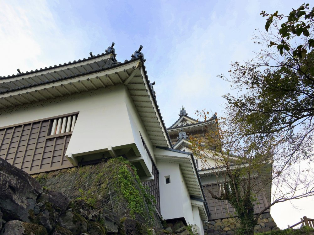 Looking up at Ono Castle from below