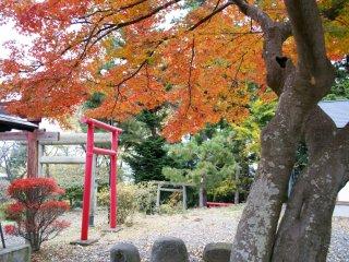 Яркие осенние цвета так украшают окрестности храма! Хоть храм Китаро Инари и маленький, но он невообразимо красивый!