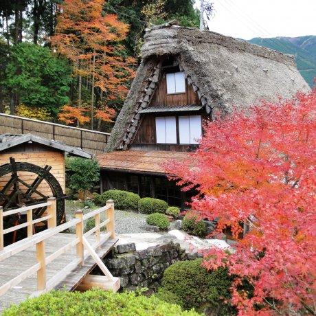 Gassho Folk Village in Autumn