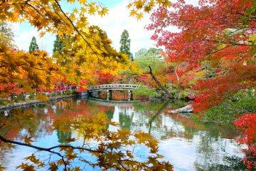 Musim gugur di Eikando Temple