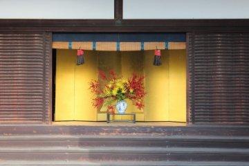오쿠루마요세 근경