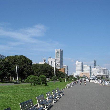 Yamashita Park in Yokohama City