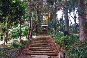 The path to Daiyuji