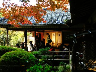 Visitors appreciating beautiful autumn leaves from the Room of Shisen