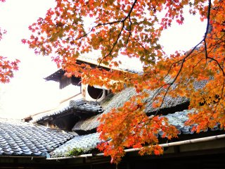 Autumn leaves hang in front the graceful roof of the villa