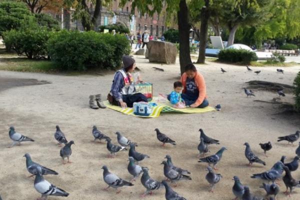 Keluarga muda yang sedang berpiknik di Nishinomaru Garden.