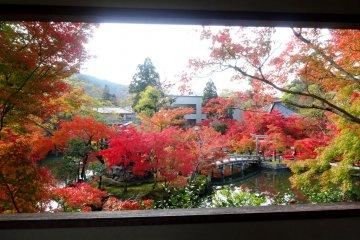 Autumn Scenery of Eikando