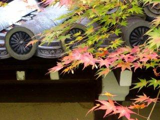 단풍잎과 조각이 새겨진 기왓장