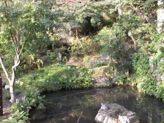 Có một ao nước nhỏ phía dưới ngôi đền phụ