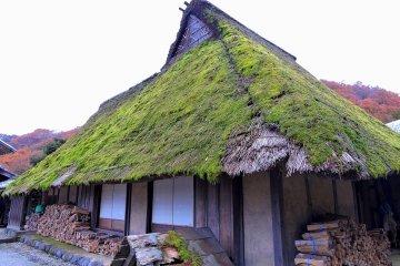 Соломенная крыша дома заросла мхом и травой