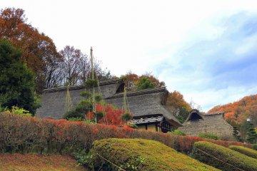 Живописный осенний пейзаж в Музее народной деревни Осагоэ