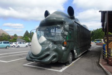 <p>The &quot;Jungle Bus&quot; at the African Safari Park</p>