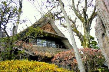Фронтон дома с соломенный крышей почти не видно за деревьями