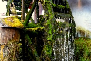 Magnificently mossy water wheel