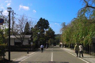 Autumn in Akita