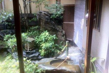 <p>Вид из окна. Сад Хиирагия.</p>