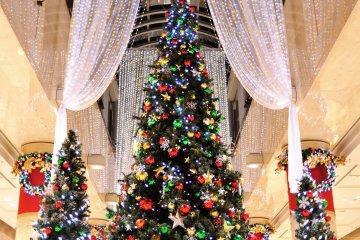 <p>Огромное дерево&nbsp;окутано мягким свечением&nbsp;занавесок</p>