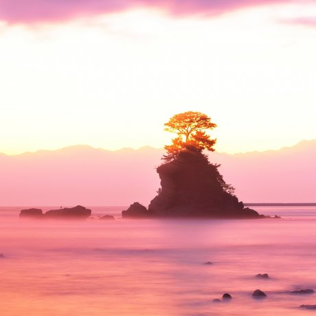 Côte de Toyama aux Paysages Variés