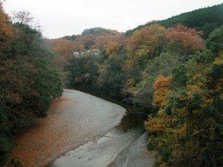 Sông quấn quanh một khúc cua
