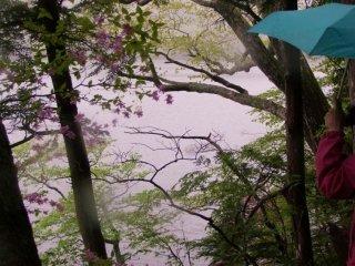 빗속에서 등산하는 것은 아름다운 경험이었다
