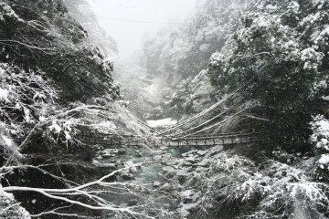 <p>Kazurabashi bridge during the winter season</p>