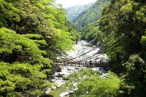 Jembatan Kazurabashi di musim panas