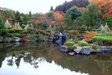 아름다운 조경과 연못
