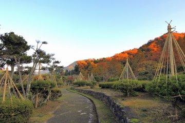아지마노엔공원 안쪽의 풍향로