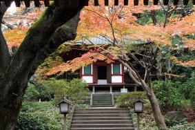 O Jardim Secreto de Takanawa