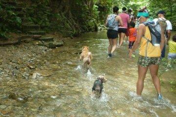 Start of the river trek