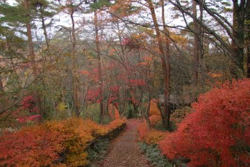 <p>Awesome fall colors</p>