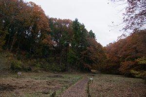 Between Mt. Tenran and Mt. Tonosu