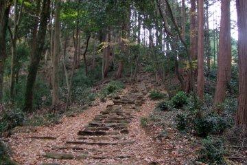 <p>Ascent of Mt. Tonosu</p>