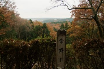<p>Scenic viewpoint</p>