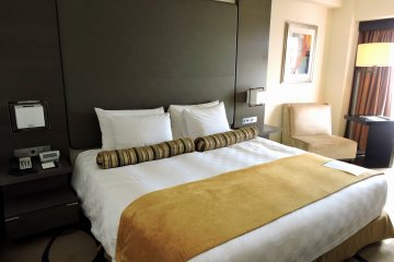 <p>Deluxe Club Double Room with 29.9㎡ on the 15th floor</p>