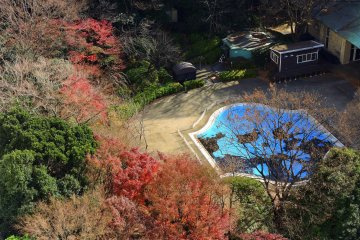 <p>Hotel pool and brilliant autumn leaves at the end of the year! There are other bigger pools in the hotel, too.</p>