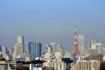 <p>Rooms on the higher level floors have great view of the city, which of course&nbsp;includes Tokyo Tower!</p>