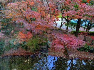나는 2014년 말에 이곳을 방문했지만 정원의 단풍잎은 여전히 눈부신 빨간색과 주황색으로 칠해져 있었다