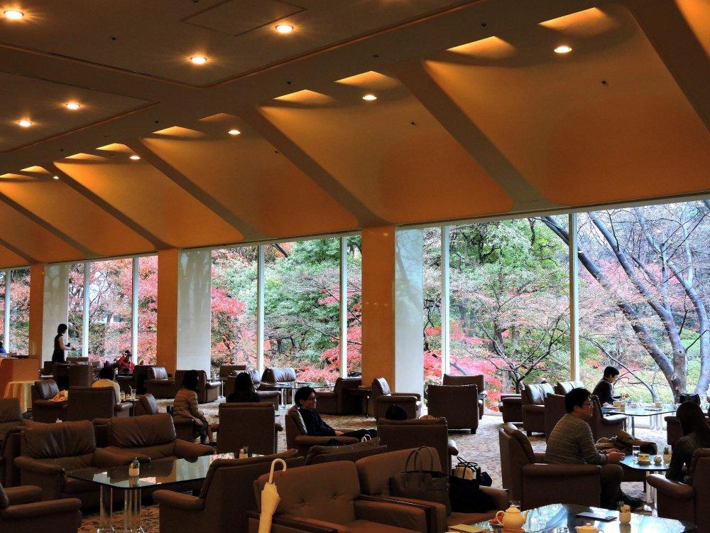 로비를 걸어 내려갈 때, 밖에 있는 일본 정원의 아름다운 가을 나뭇잎들이 당신의 관심을 끈다
