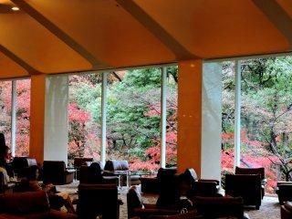 널찍한 라운지는 정원의 아름다운 색깔의 잎을 볼 수 있는 편안한 소파와 높은 창문을 가지고 있다