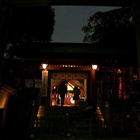 ตามหาความรักในโตเกียว
