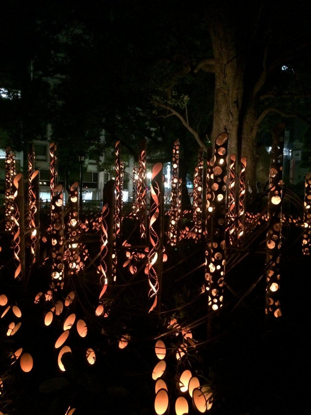 ต้นไม้ใหญ่ของสวนฮะนะบะทะตกแต่งด้วยแสงไฟสำหรับงานเทศกาล
