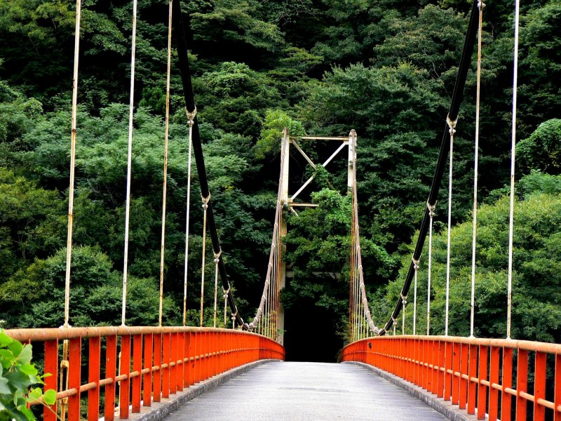 <p>This old suspension bridge has nothing on the other side</p>